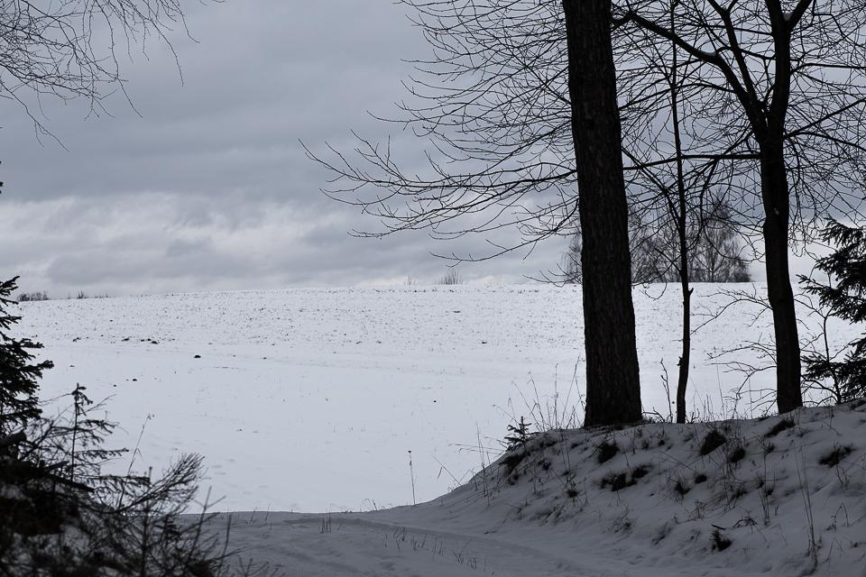Winterspaziergang 005