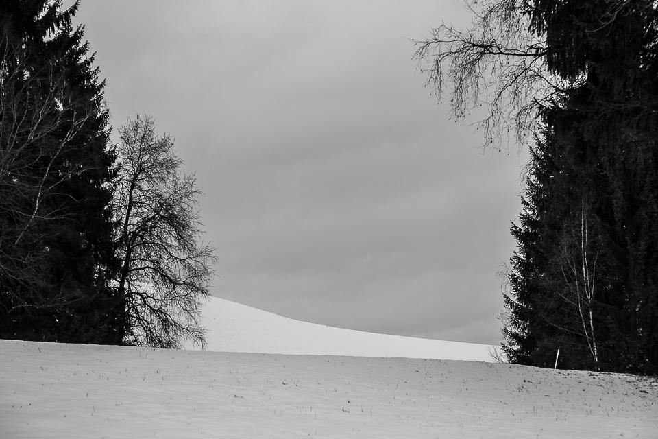Winterspaziergang 007