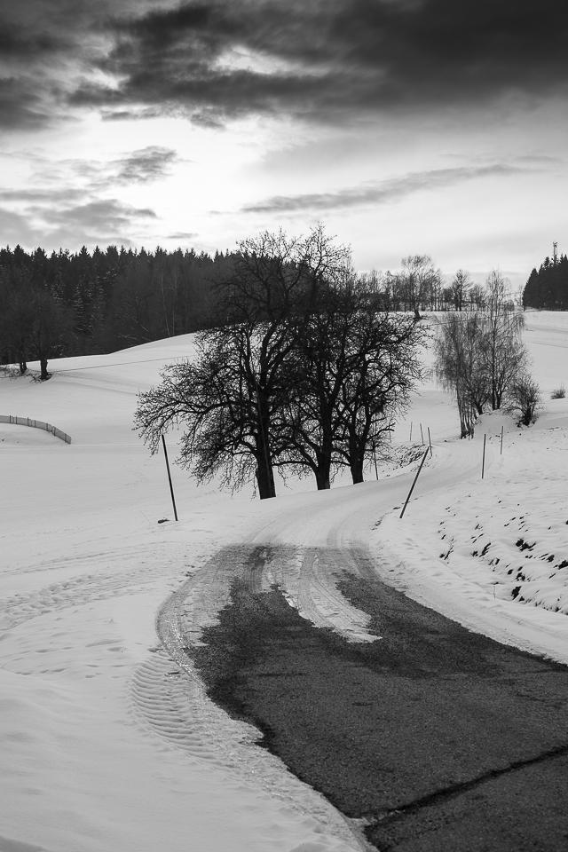 Winterspaziergang 011