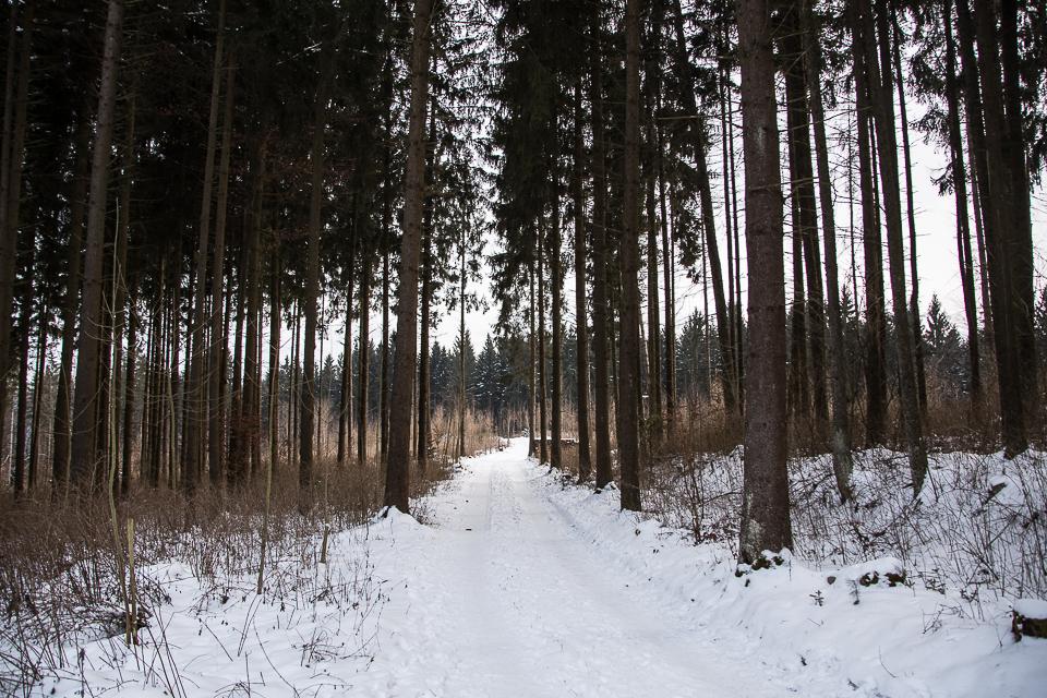 Winterspaziergang 013