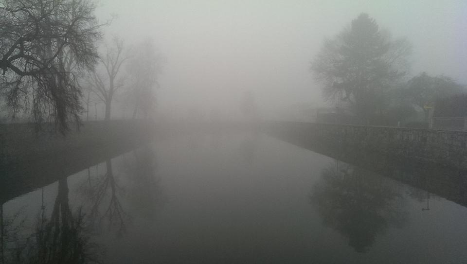 Nebelspaziergang (c) FloraFellner-10
