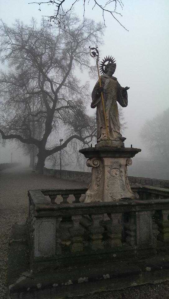 Nebelspaziergang (c) FloraFellner-12