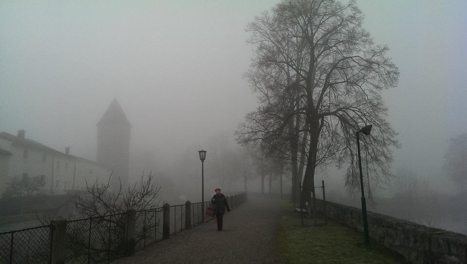 Nebelspaziergang (c) FloraFellner-15