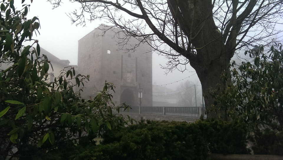 Nebelspaziergang (c) FloraFellner-6