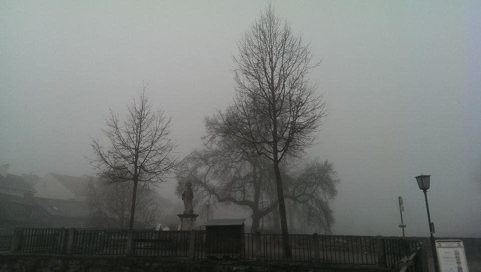 Nebelspaziergang (c) FloraFellner-7