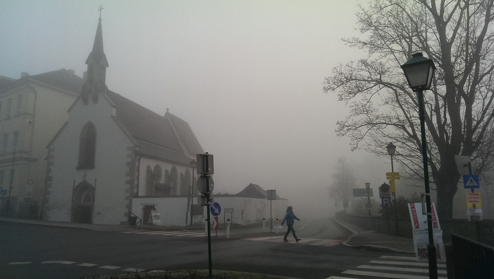 Nebelspaziergang (c) FloraFellner-8
